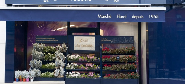 Monceau Fleurs Meudon